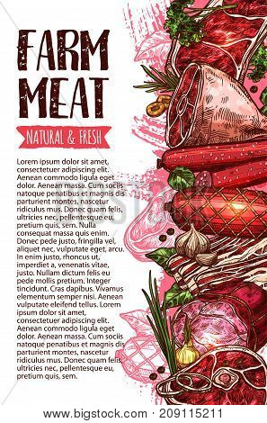 Sausage and meat fresh farm product vector banner template. Beef steak, pork sausage, ham, bacon, salami, lamb sirloin, frankfurter, chicken wurst sketch poster for butcher shop, barbecue menu design
