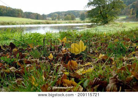 Autumn is a very nice season.in bavaria