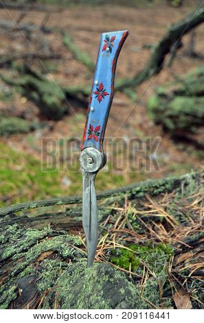 Illustrative Editorial.Soviet hand made knife of 1960-th. in the forest near Kiev.Kiev,Ukraine.October 14, 2017