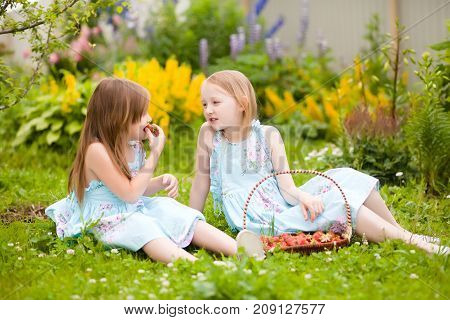 Happy little sisters have fun sitting in the green grass eating organic strawberries in the garden talking. Warm summer day. A delicious vitamin diet. Family active rest. Friendship of sisters. Relationship in the family.