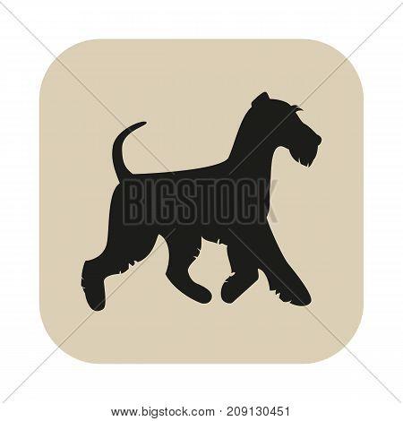 Black silhouette of the terrier. Vector illustration.