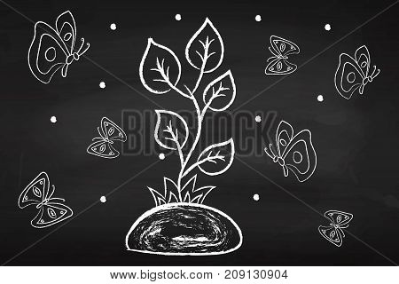 Bio. Organic. Eco. Clean. Nature. Flower. Plant. On the chalkboard.