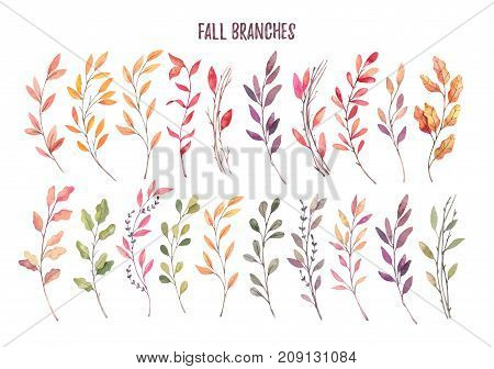 Hand Drawn Watercolor Illustrations. Autumn Botanical Clipart. Set Of Fall Leaves, Herbs And Branche