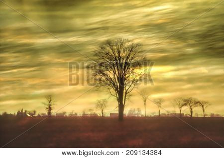 Artistic background with big tree and strange sky