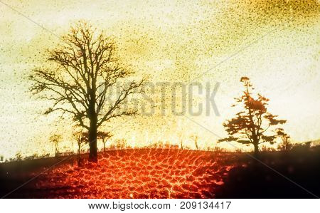 Artistic background with trees and organic texture
