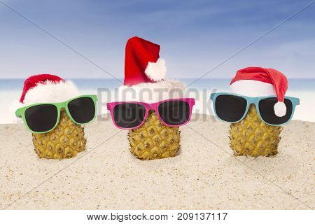 Picture of three pineapples wearing sun glasses and Santa Claus hat on the tropical beach