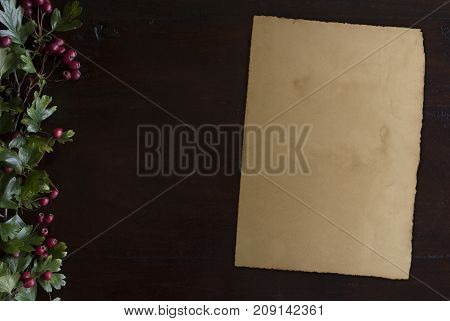 beautiful rustic dark wooden background with hawthorn foliage border at left side and vintage paper sheet
