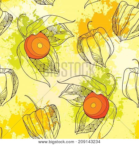 Vector seamless pattern with outline Physalis or Cape gooseberry or Ground cherry fruits on the pastel yellow background with blots. Pattern with Physalis plant in contour style for autumn design.