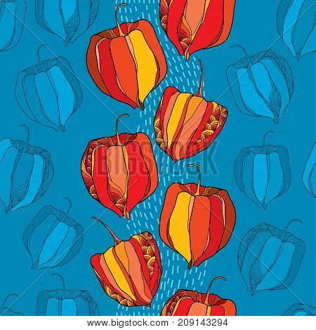 Vector seamless pattern with outline Physalis or Cape gooseberry or Ground cherry fruits on the blue striped background. Pattern with Physalis plant in contour style for autumn design.