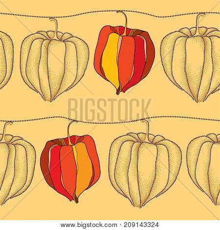 Vector seamless pattern with dotted Physalis or Cape gooseberry or Ground cherry fruits on the beige background. Pattern with Physalis plant in dotwork style for autumn design.