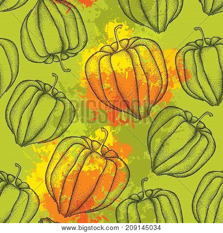 Vector seamless pattern with dotted Physalis or Cape gooseberry or Ground cherry fruits on the khaki background with blots. Pattern with Physalis plant in dotwork style for autumn design.