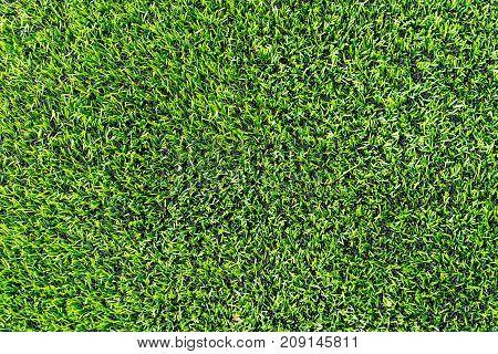 Plastic grass with rubber floor for Indoor sport courtyard