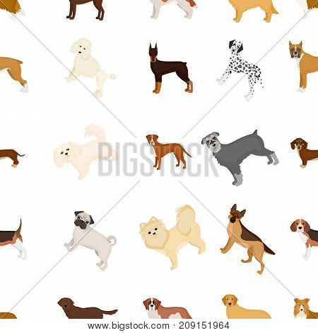 Dog, pooch, breed, and other  icon in cartoon style.Dalmatian, shepherd, terrier icons in set collection