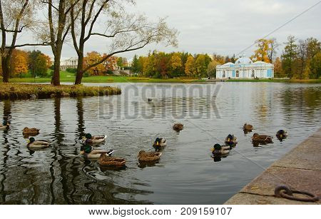 Morning in October walk through the Catherine Park in Tsarskoye Selo the Grotto Pavilion and the Great Pond