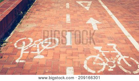 red paved bike path or a bike is painted in white paint in Barcelona Spain