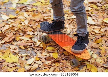 A Boy Skating In An Autumn Park