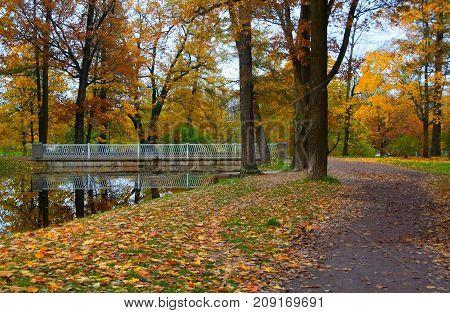 Autumn evening at the Alexander Park in Tsarskoye Selo
