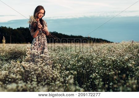 beautiful girl in the evening blooming field