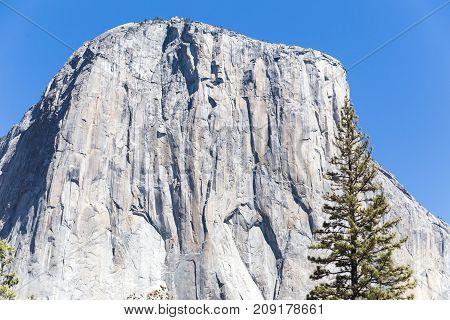 El Capitan At Yosemite National Park In Summer
