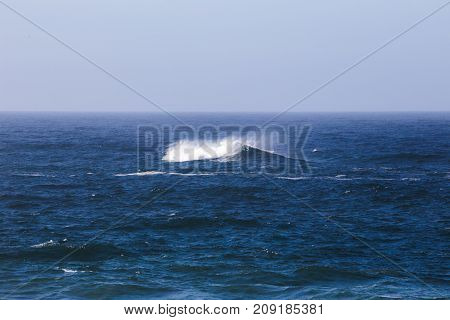 Ocean Wave On The Pacific Coast