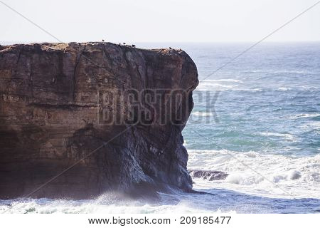 Ocean Waves On The Pacific Coast