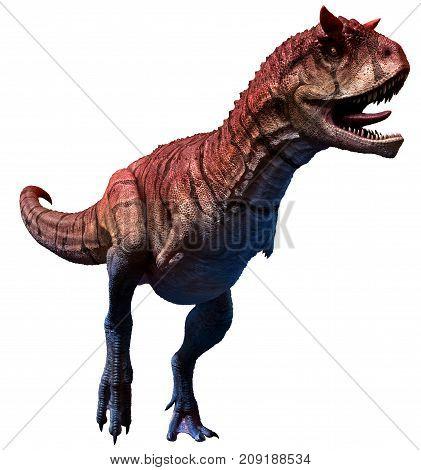 Carnotaurus sastrei from the Cretaceous era 3D illustration