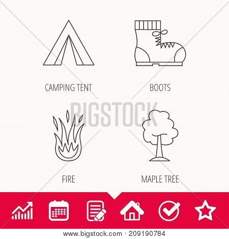 Maple tree, camping tent and hiking boots. Fire flame linear sign. Edit document, Calendar and Graph chart signs. Star, Check and House web icons. Vector