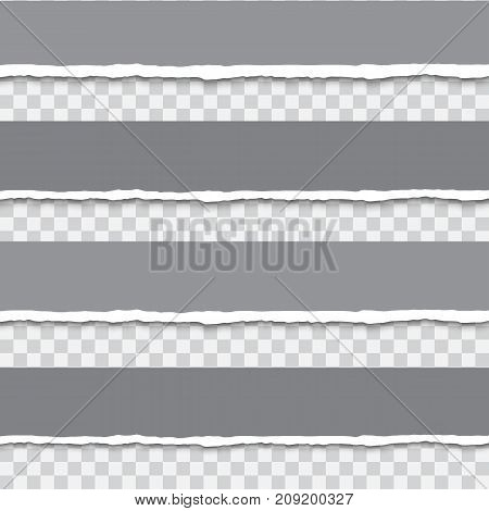 Torn paper banner set isolated on transparent background, realistic vector