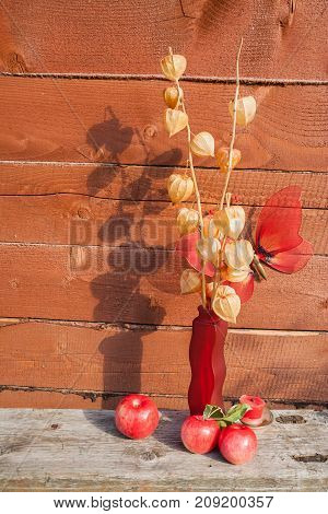 The herbarium in a red vase stands on a wooden bench on the background of a wooden wall. On the back is a large red artificial butterfly. In front of the vase are red apples.