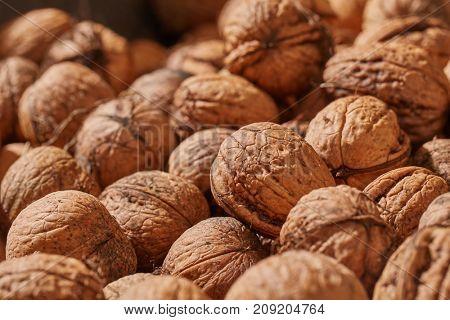 Big pile of walnuts close up