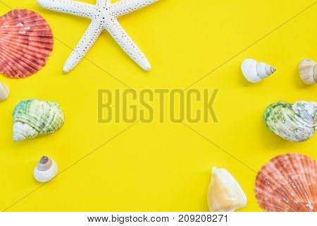 Group of shell on yellow background with copy space