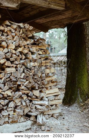 Firewood. Dry firewood in a pile for furnace kindling