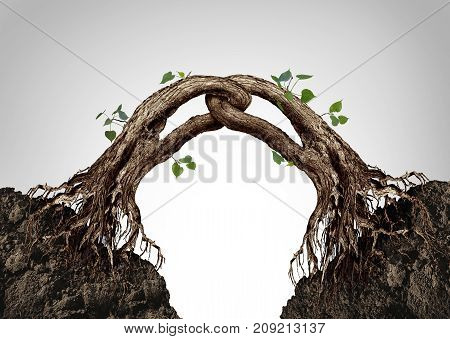 Connected together concept and synergy symbol as two trees merging and linked in a strong chain as a business cooperation metaphor in a 3D illustration style