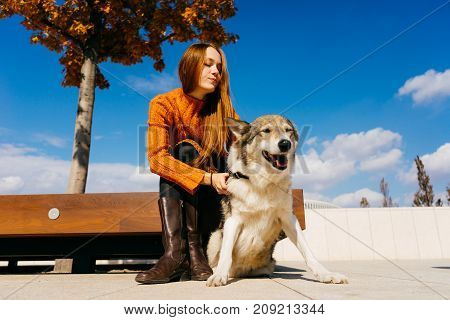 A nice girl in an orange sweater sits on a bench in the park and looks at her dog. Blue beautiful sky, sunny autumn day, warm weather.