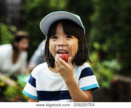A boy eating tomato