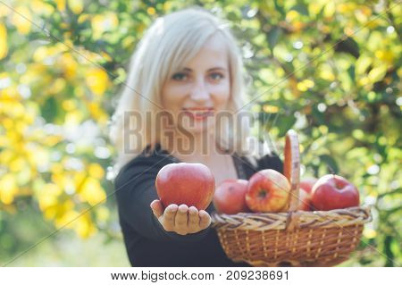 A girl is holding a ripe red apple in her hands. Focus on the apple.