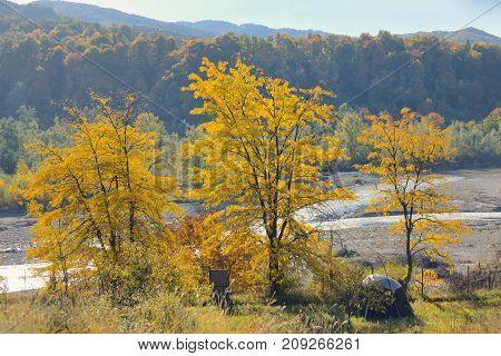 Autumn foliage over romanian river, specific season