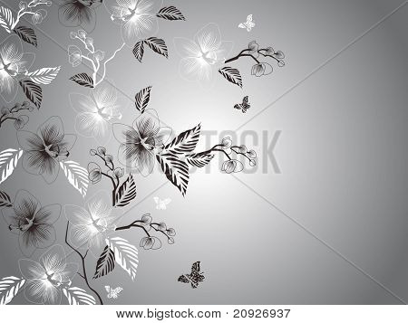 grey background with many blossom, vector illustration