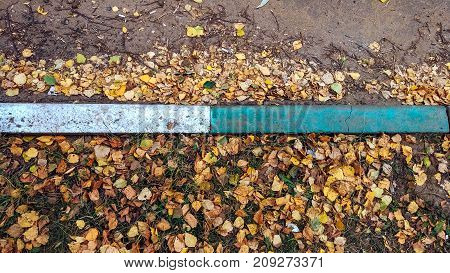 The curb on the road in the fall city is a lot of yellow and green foliage, a dirty garbage city.