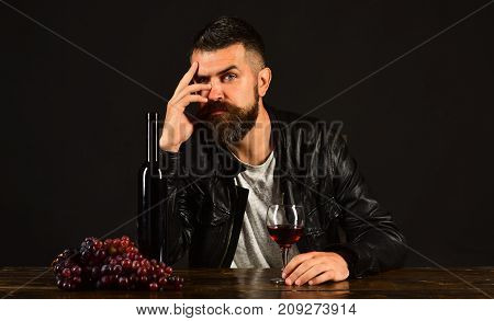 Degustator With Calm Face Sits By Wine Bottle And Grapes