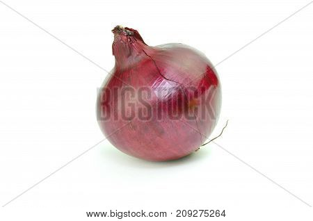 Red shiny onion isolated on white background