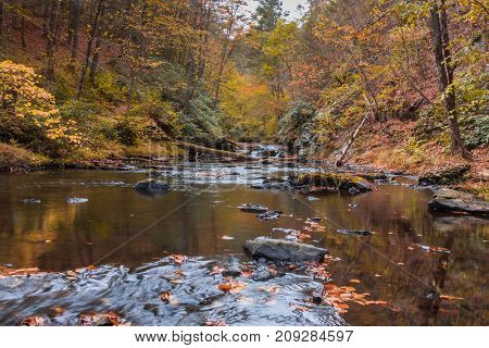 Gentle river in the forest in Autumn