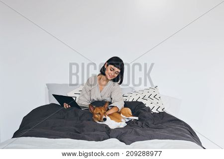 Beautiful young woman professional freelancer works from home in bed takes sick leave or just skips office hours pets her best friend basenji brown dog concept love and laptop