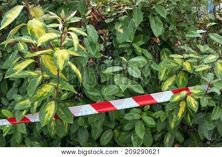 Police tape. Concept- crime scene the danger the restriction of movement.