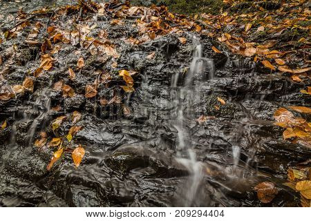 Close up detail of water flowing over tiered rocks with golden fall foliage