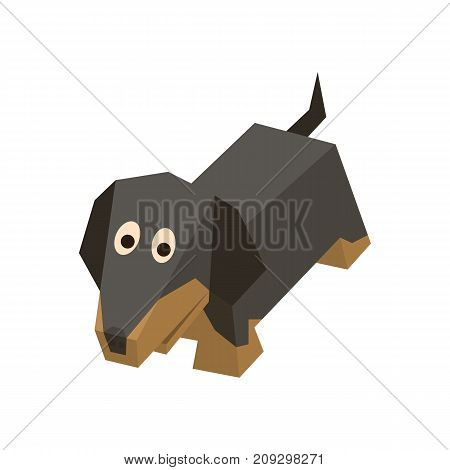 Vector breed isometric dachshund. Isolated cute isometry dog. Element of geometric dog for 3d game. Icon of domestic and home German badger-dog, puppy. Vector illustration of German badger-dog.