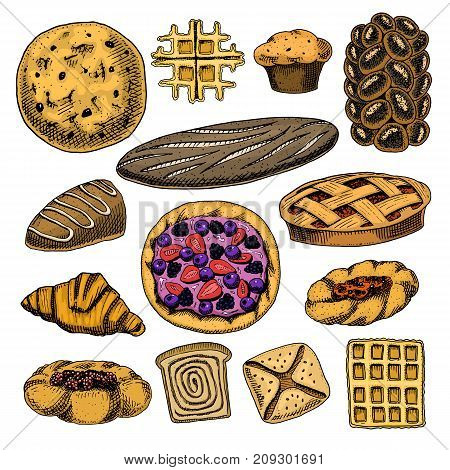 bread and pastry donut Belgian waffles and fruit pie. sweet bun or croissant, muffin and toasts. engraved hand drawn in old sketch and vintage style for label and menu bakery shop. organic food
