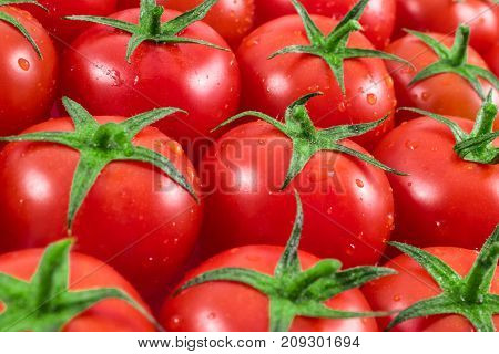 red tomatoes background on white. tomato vegetable.