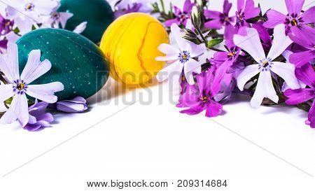 close-up of colorful easter eggs and phlox flowers on white background with copy space. border template, easter greeting and holiday card.