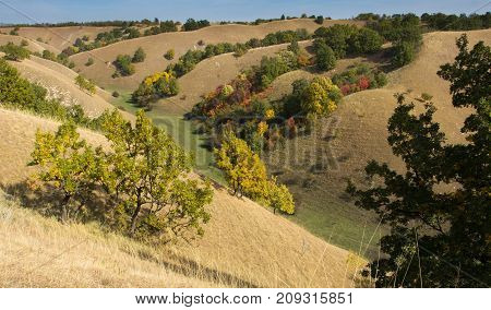 Birdseye View Of Colorful Hills In Autumn
